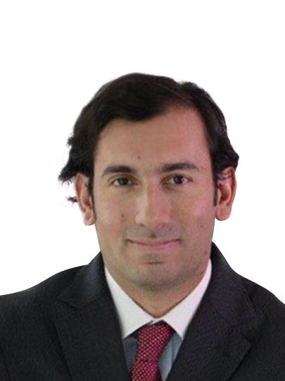 FERNANDO ARAB VERDUGO - CHILE